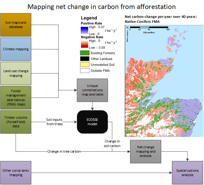 "Graphical abstract for the paper ""Not seeing the carbon for the trees? Why area-based targets for establishing new woodlands can limit or underplay their climate change mitigation benefits"" by Matthews et al (2020)"